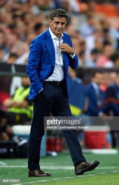 Jose Miguel Gonzalez Michel Manager of Malaga CF looks on during the La Liga match between Valencia and Malaga at Estadio Mestalla on September 19...