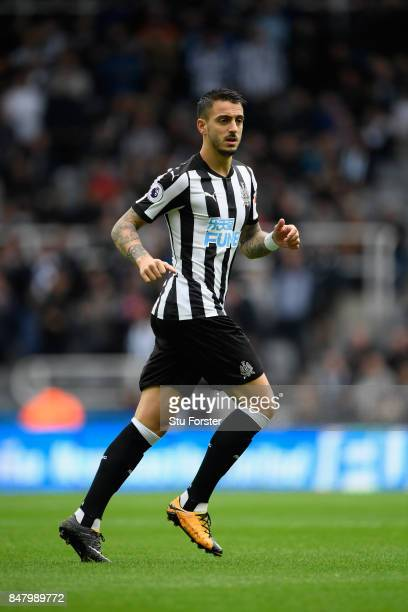 Joselu of Newcastle in action during the Premier League match between Newcastle United and Stoke City at St James Park on September 16 2017 in...