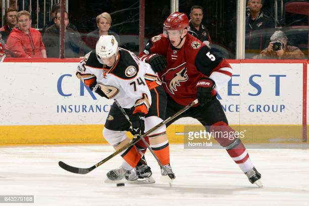 Joseph Cramarossa of the Anaheim Ducks and Connor Murphy of the Arizona Coyotes battle for the puck during the first period at Gila River Arena on...
