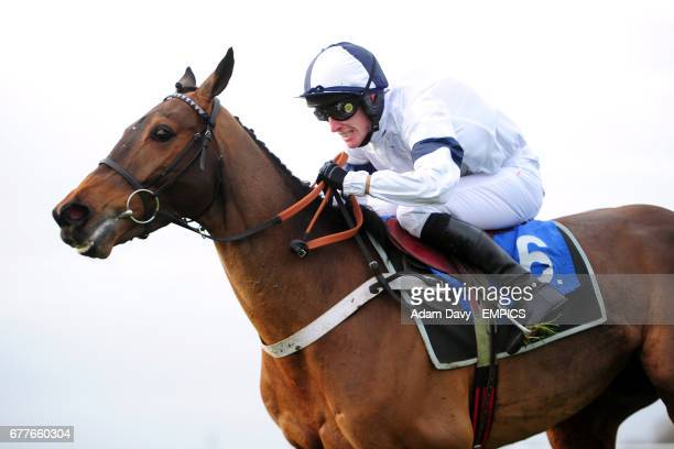 Joseph Lister ridden by jockey Gary Derwin in the EPDS Consultants 'Savings Developers Money' Novices' Hurdle Race
