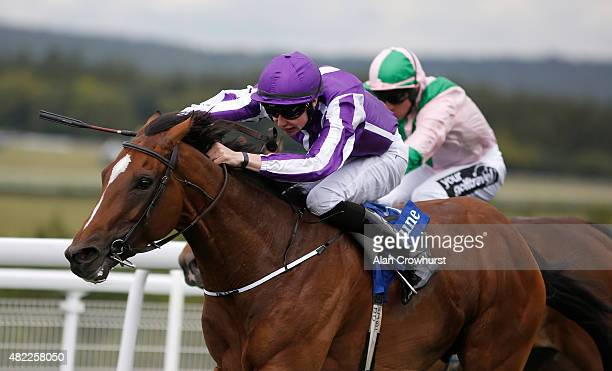 Joseph O'Brien riding Highland Reel win The Neptune Investment Management Gordon Stakes from Scottish at Goodwood racecourse on July 29 2015 in...