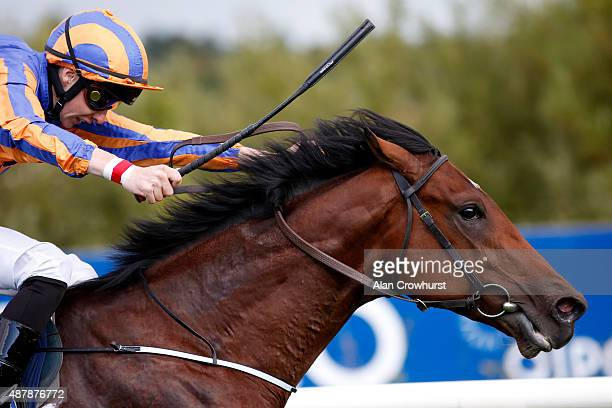 Joseph O'Brien riding Johannes Vermeer win The Willis Champion Juvenile Stakes at Leopardstown racecourse on September 12 2015 in Dublin Ireland