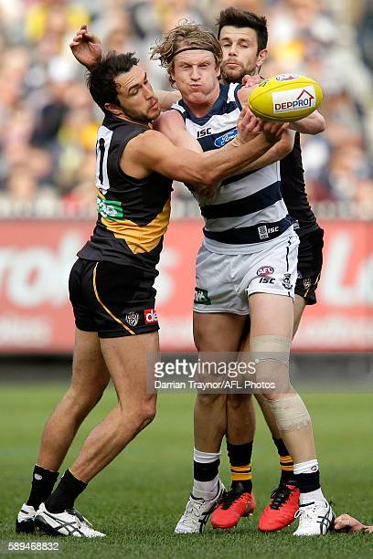 Josh Caddy of the Cats handballs as he is tackled by Shane Edwards and Trent Cotchin of the Tigers during the round 21 AFL match between the Richmond...