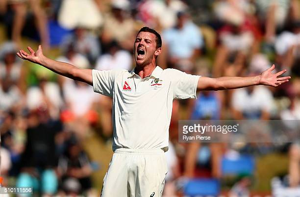 Josh Hazlewood of Australia appeals for a wicket during day three of the Test match between New Zealand and Australia at Basin Reserve on February 14...