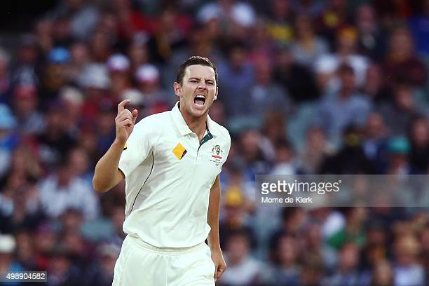 Josh Hazlewood of Australia celebrates after he got the wicket of BJ Watling of New Zealand during day one of the Third Test match between Australia...