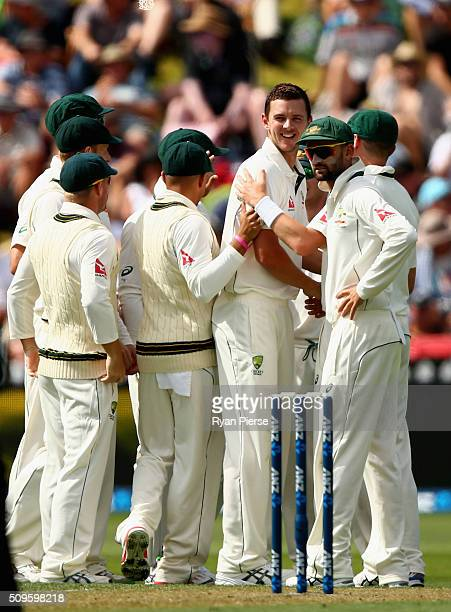 Josh Hazlewood of Australia celebrates after taking the wicket of Martin Guptill of New Zealand during day one of the Test match between New Zealand...