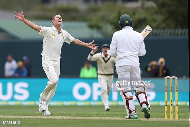 Josh Hazlewood of Australia celebrates after taking the wicket of Hashim Amla of South Africa during day one of the Second Test match between...