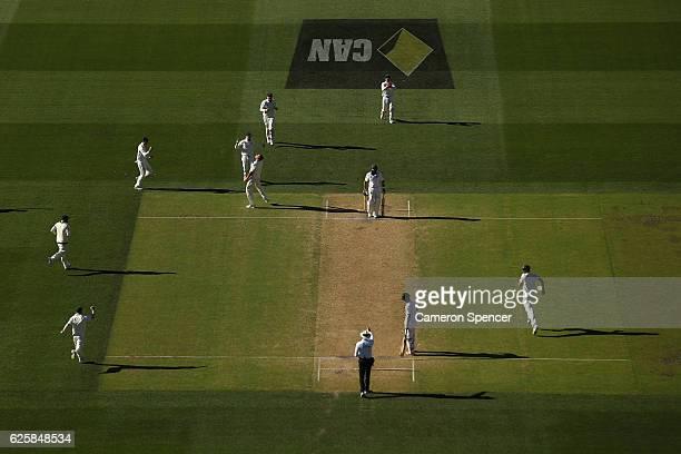 Josh Hazlewood of Australia celebrates dismissing Hashim Amla of South Africa during day three of the Third Test match between Australia and South...