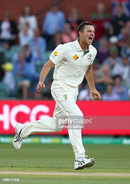 Josh Hazlewood of Australia celebrates dismissing Tom Latham of New Zealand during day two of the Third Test match between Australia and New Zealand...