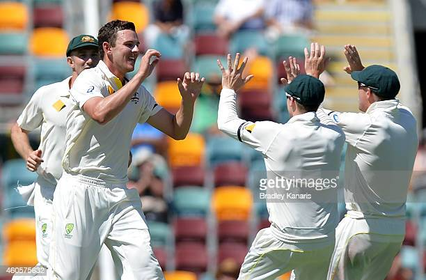 Josh Hazlewood of Australia celebrates with team mates after taking the wicket of Virat Kohli of India during day one of the 2nd Test match between...