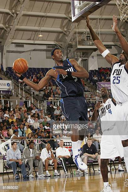 Josh Howard of the Dallas Mavericks looks to pass against the defense of Michael Finley and Erick Dampier during an intrasquad exhibition at the Mavs...