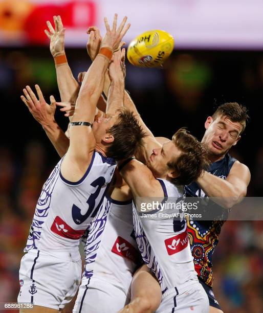 Josh Jenkins of the Crows flies during the 2017 AFL round 10 match between the Adelaide Crows and the Fremantle Dockers at the Adelaide Oval on May...