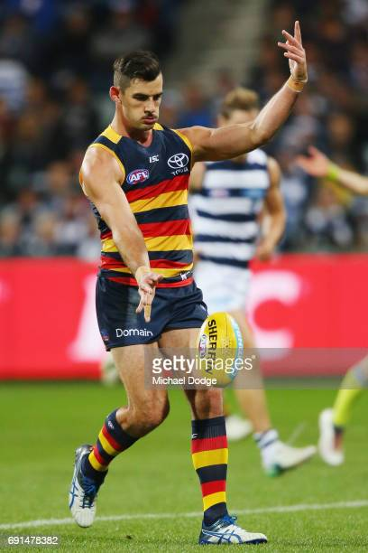 Josh Jenkins of the Crows kicks the ball during the round 11 AFL match between the Geelong Cats and the Adelaide Crows at Simonds Stadium on June 2...