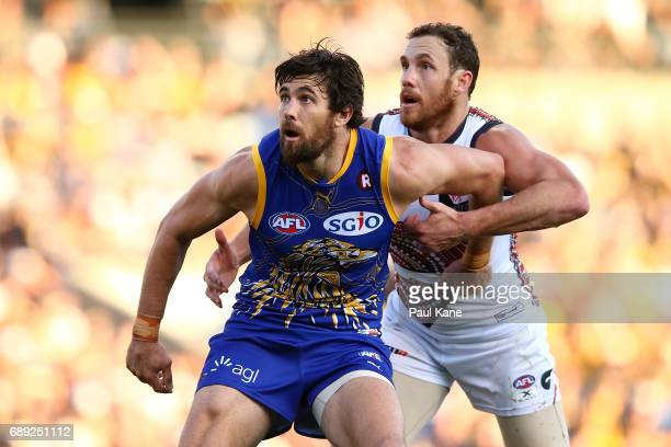 Josh Kennedy of the Eagles and Shane Mumford of the Giants contest the ruck during the round 10 AFL match between the West Coast Eagles and the...