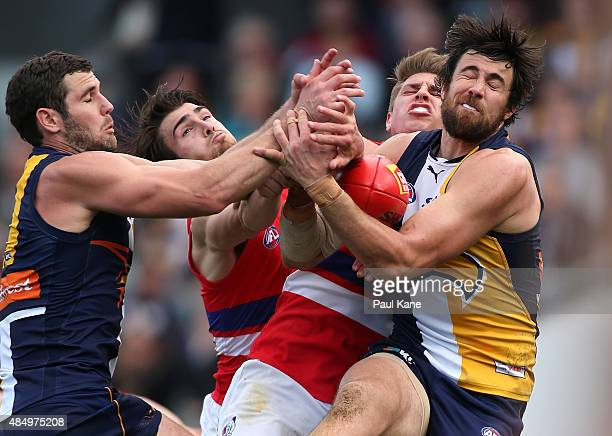 Josh Kennedy of the Eagles marks the ball against Easton Wood and Michael Talia of the Bulldogs during the round 21 AFL match between the West Coast...