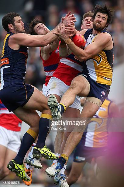 Josh Kennedy of the Eagles marks the ball during the round 21 AFL match between the West Coast Eagles and Western Bulldogs at Domain Stadium on...