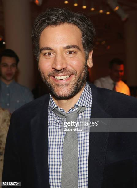 Josh Radnor poses at The 2nd Annual Space on Ryder Farm Gala at Metropolitan West on November 6 2017 in New York City
