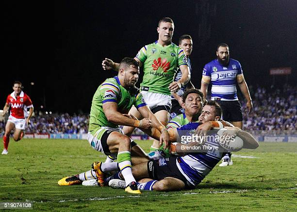 Josh Reynolds of the Bulldogs scores a try during the round five NRL match between the Canterbury Bulldogs and the Canberra Raiders at Belmore Sports...