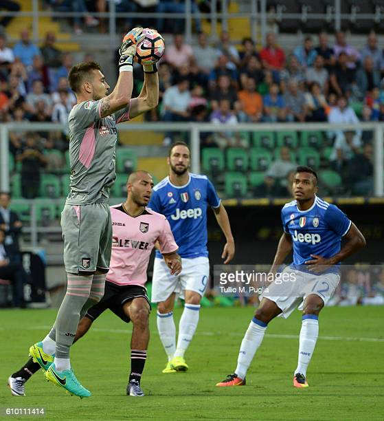Josip Posavec of Palermo in action during the Serie A match between US Citta di Palermo and Juventus FC at Stadio Renzo Barbera on September 24 2016...