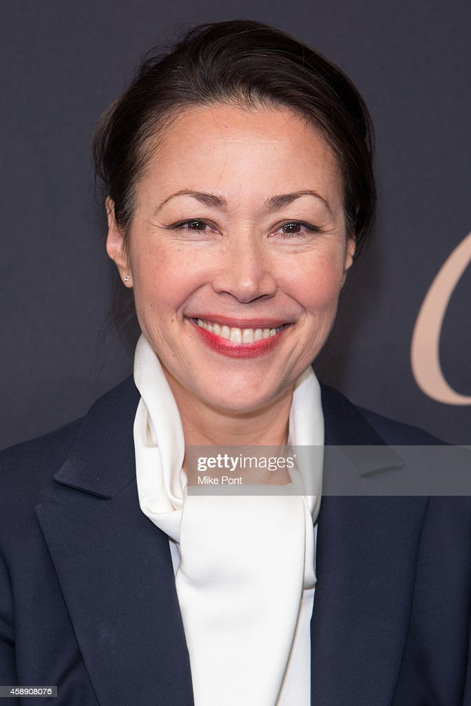 Journalist Ann Curry attends The Maison Cartier Celebrates 100th Anniversary Of Their Emblem La Panthere De Cartier! at Skylight Clarkson Sq on November 12, 2014 in New York City.