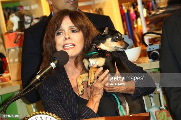 Journalist Jane VelezMitchell speaks during a press conference celebrating Calfornia Governor Jerry Brown signing California assembly Bill 485 The...