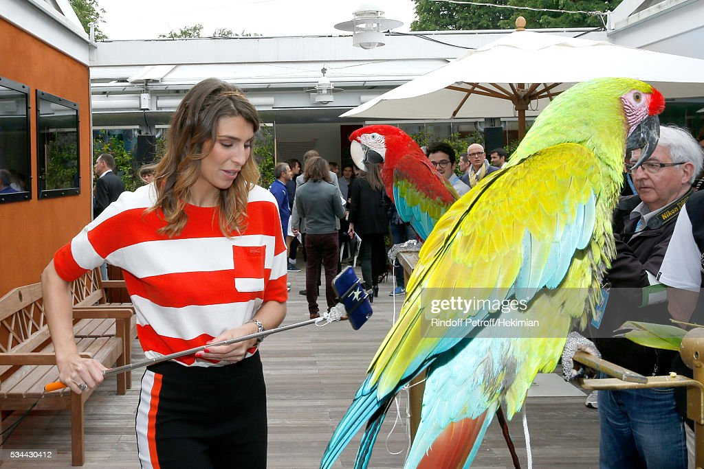 Journalist <a gi-track='captionPersonalityLinkClicked' href=/galleries/search?phrase=Laury+Thilleman&family=editorial&specificpeople=7372762 ng-click='$event.stopPropagation()'>Laury Thilleman</a> with parrots Arthur (Red) and Zoe (Green) attend the 2016 French Tennis Open - Day Four at Roland Garros on May 25, 2016 in Paris, France.