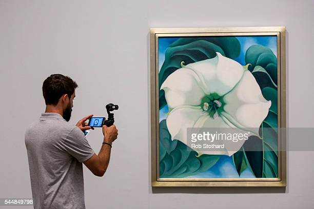 Journalists view 'Jimson Weed/White Flower No1' by American artist Georgia O'Keeffe at Tate Modern on July 4 2016 in London England The exhibition...