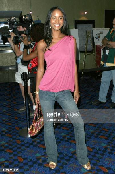 Joy Bryant during 2003 Toronto International Film Festival 'How To Get The Man's Foot Outta Your Asss' Premiere at Varsity 8 in Toronto Ontario Canada