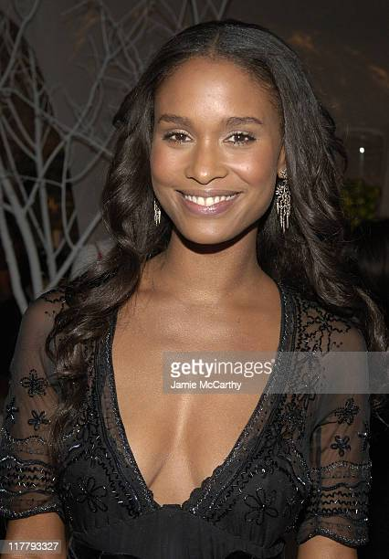 Joy Bryant during CFDA 7th on Sale KickOff Red Carpet and Inside at Sky Light Studios in New York City New York United States