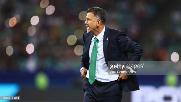 Juan Carlos Osorio head coach of Mexico looks on during the FIFA Confederations Cup Russia 2017 Group A match between Mexico and New Zealand at Fisht...