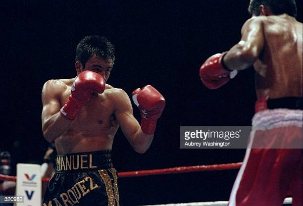 Juan Manuel Marquez in action against Luis Samudio during a match at the Great Western Forum in Inglewood California March 16 1998 Mandatory Credit...