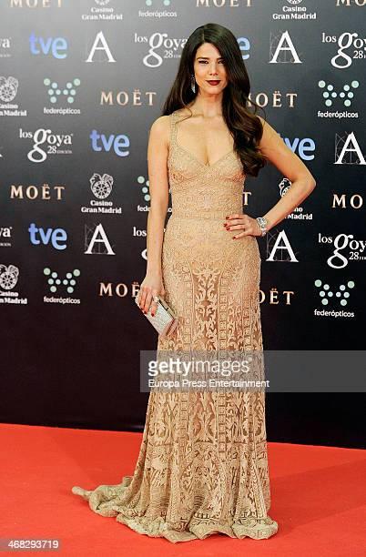 Juana Acosta attends Goya Cinema Awards 2014 at Centro de Congresos Principe Felipe on February 9 2014 in Madrid Spain