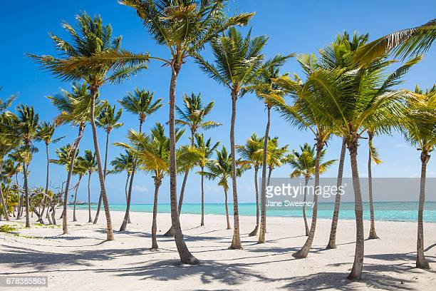 Juanillo Beach, Cap Cana, Punta Cana, Dominican Republic, West Indies, Caribbean, Central America