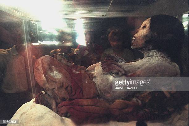 'Juanita' a 500yearold mummy is displayed 09 March 1999 at the National Museum in Lima for the first time 'Juanita' was found in September 1995 on...