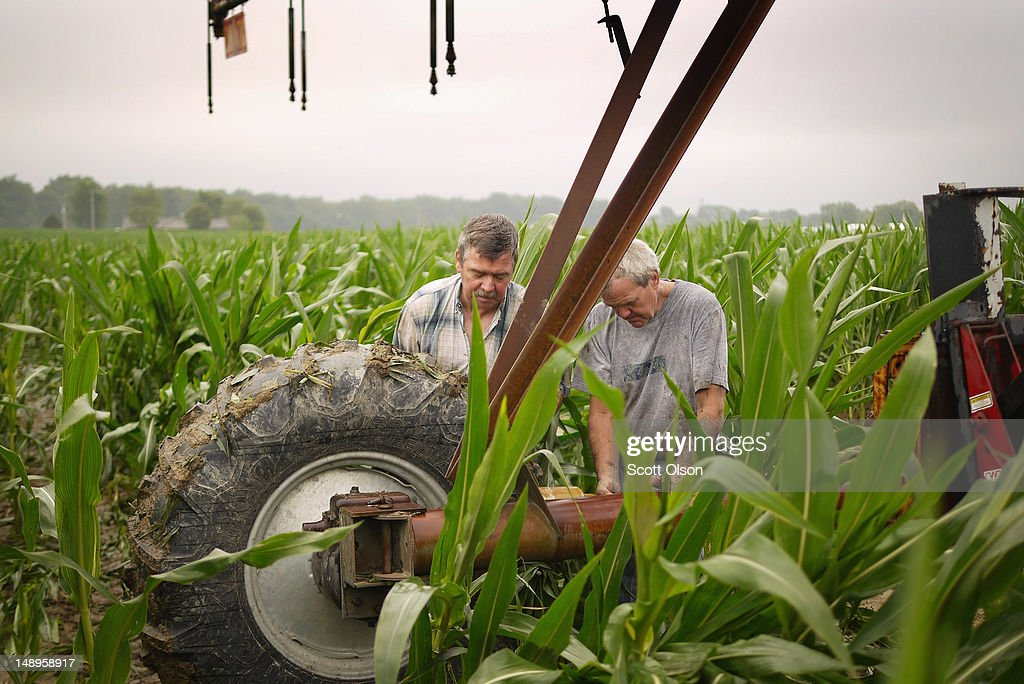 Jud Vaught (L) and his brother Bill Kirklin setup an irrigation system in their cornfield on July 20, 2012 near Whiteland, Indiana. Kirklin and Vaught, who are 6th generation Indiana farmers, raise about 1,500 acres of corn and soybeans on a farm founded by their family in 1835. The corn and soybean belt in the middle of the nation is experiencing one of the worst droughts in more than five decades. Indiana was the nation's fourth largest corn producer in 2011.