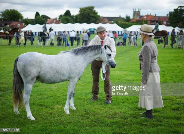 A judge assesses a pony during the 194th Sedgefield Show on August 12 2017 in Sedgefield England The annual show is held on the second Saturday each...