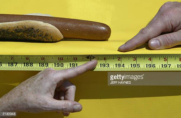 Judges measure the official length of the world longest hot dog at 16 feet 1 inch besting the previous record of 15 feet 3 inches 02 July 2003 at...