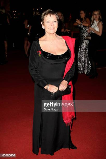 Judi Dench arrives at the afterparty for the Royal World Premiere of the new James Bond 007 film 'Quantum of Solace' held at Battersea Power Station...