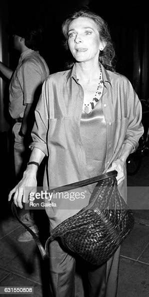 Judy Collins attends 'I Love New York' Press Conference on August 22 1985 at Lincoln Center in New York City
