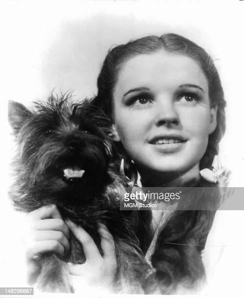 Judy Garland holding her dog Toto in a scene from the film 'The Wizard Of Oz' 1939