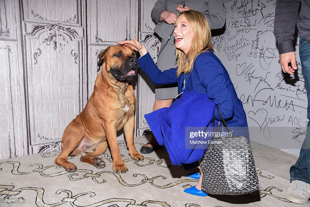 <a gi-track='captionPersonalityLinkClicked' href=/galleries/search?phrase=Judy+Greer&family=editorial&specificpeople=214752 ng-click='$event.stopPropagation()'>Judy Greer</a> with a dog from the Westminster Kennel Club Dog Show attends AOL Build Speakers Series - <a gi-track='captionPersonalityLinkClicked' href=/galleries/search?phrase=Judy+Greer&family=editorial&specificpeople=214752 ng-click='$event.stopPropagation()'>Judy Greer</a> at AOL Studios In New York on February 10, 2016 in New York City.