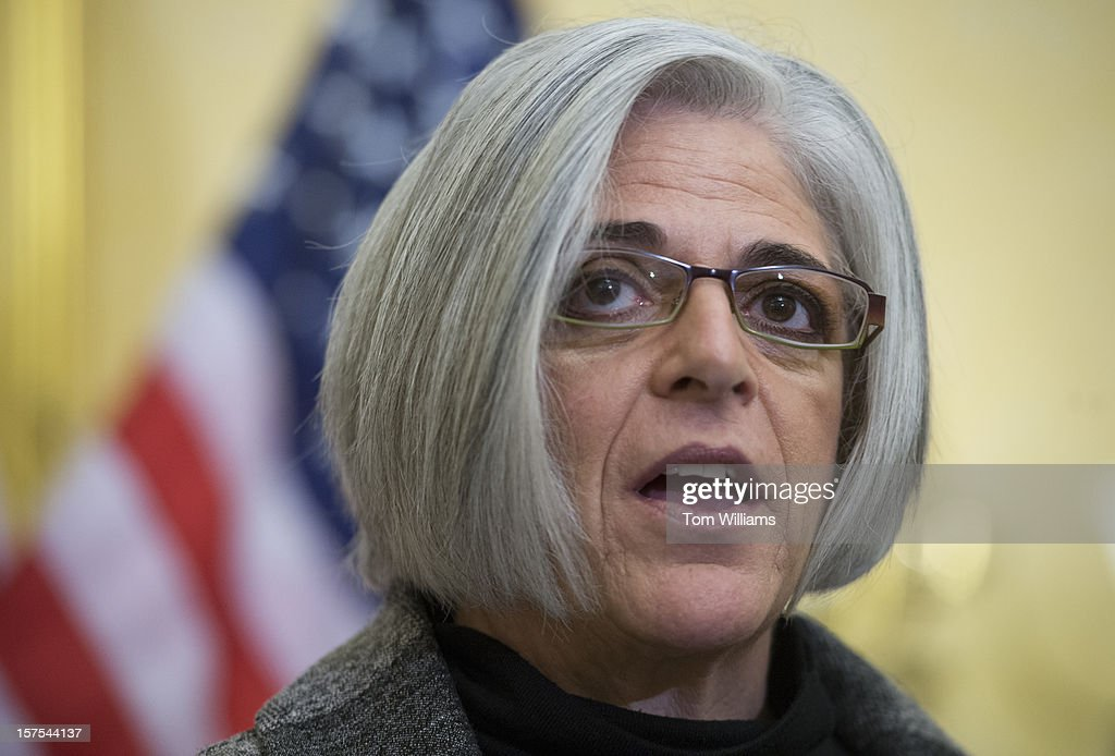 Judy Gross speaks at a news conference in the Capitol on a resolution calling on Cuba to release her husband and Maryland native Alan Gross, from prison. Gross was arrested while helping establish internet connections in a Cuban jewish community and has been imprisoned for three years.