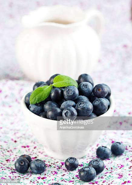 Jug and fresh Blueberries in bowl
