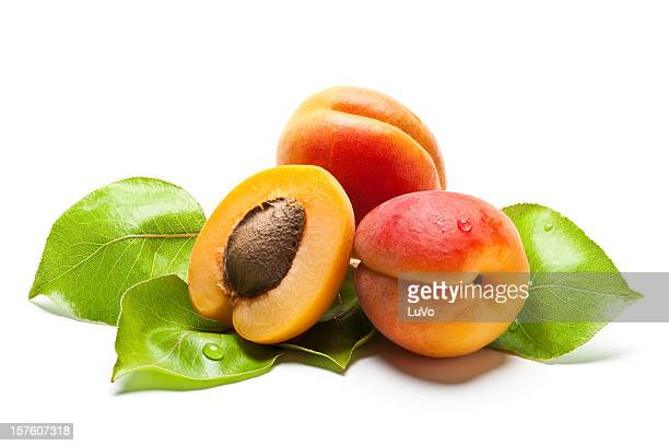 Juicy fresh apricots with leaves