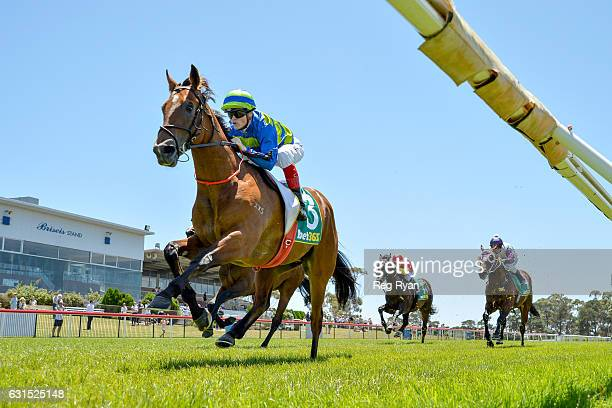 Jukebox ridden by Craig Williams wins bet365 2YO Maiden Plate at Geelong Racecourse on January 12 2017 in Geelong Australia