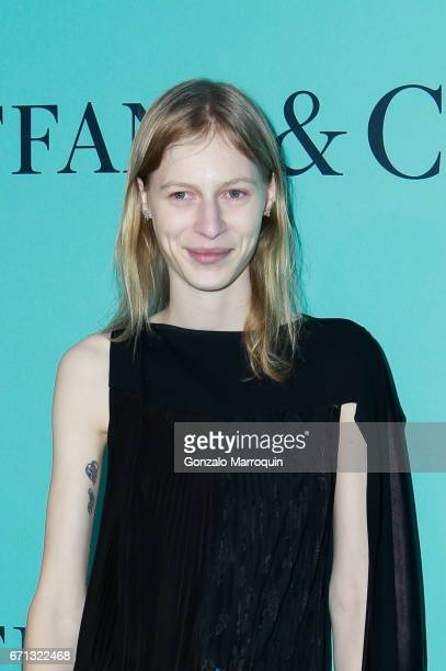 Julia Nobis attends the Tiffany Co 2017 Blue Book Collection Gala at St Anna's Warehouse on April 21 2017 in New York Cit