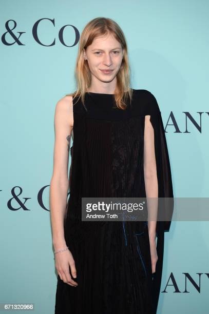 Julia Nobis attends Tiffany Co 2017 Blue Book Collection Gala at St Ann's Warehouse on April 21 2017 in New York City