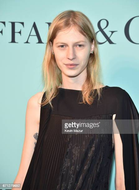 Julia Nobis attends Tiffany Co Celebrates The 2017 Blue Book Collection at ST Ann's Warehouse on April 21 2017 in New York City