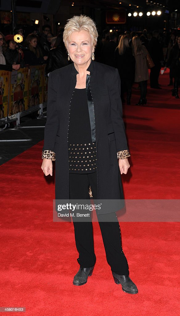 Julia Walters attends 'The Harry Hill Movie' World Premiere at Vue Leicester Square on December 19, 2013 in London, England.