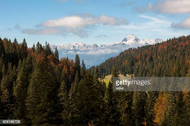 Julian Alps, Triglav and autumn forest